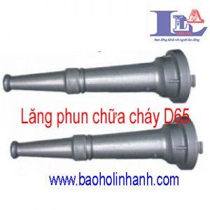 lang-phun-chua-chay-d65